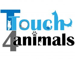 TTouch4animals